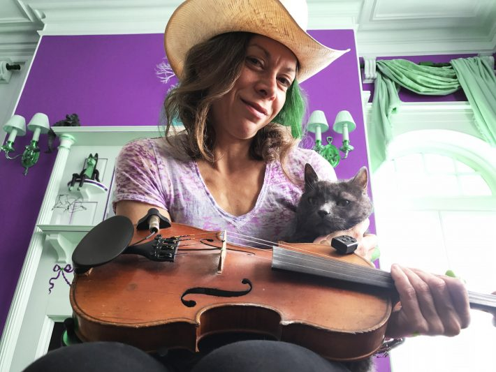 The Katz Cat and the Fiddle